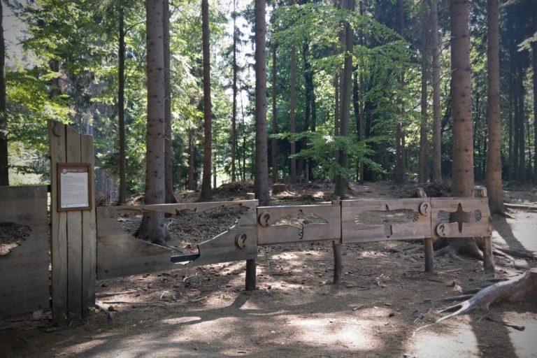 Lesní zážitky na Rysí stezce