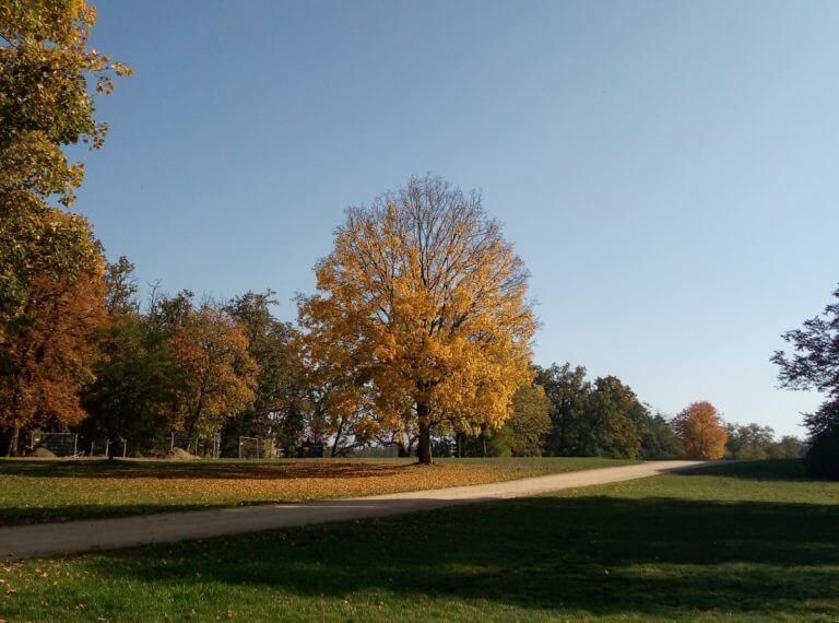 Zámek a park Kačina
