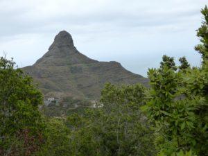 Za teplem na Tenerife