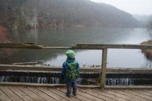Rybník Harasov – procházka na Kokořínsku