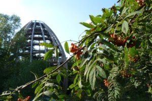 Stezka korunami stromů Lipno a Bavorský les v jeden den (fotoreport)