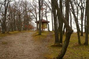Na keltské hradiště Závist z Dolních Břežan
