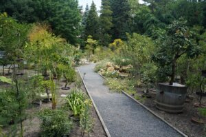 Botanická zahrada Na Slupi s dětmi
